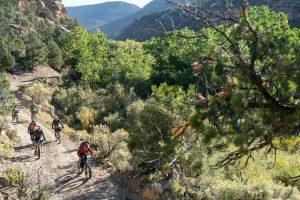 Ute Mountain Ute Tribal Park bikepacking and Ancient Puebloan cliff dwelling exploration tour.