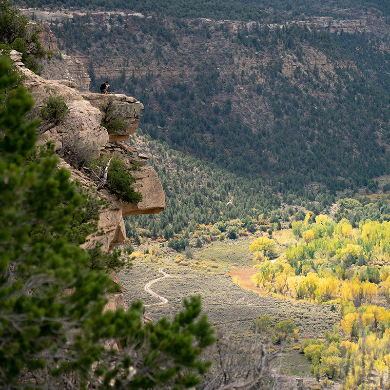 Scullbinder Ranch and Weber Canyon, looking into the Ute Mountain Ute Tribal Park